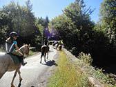 Paardrijden tijdens je vakantie