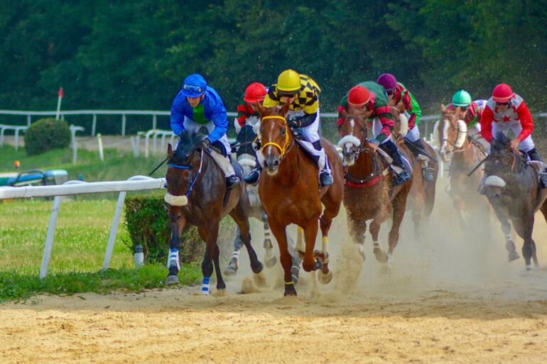 Paardrijden in Frankrijk sportactiviteiten paardensport in Pompadour renbaan ruitersport renkoers