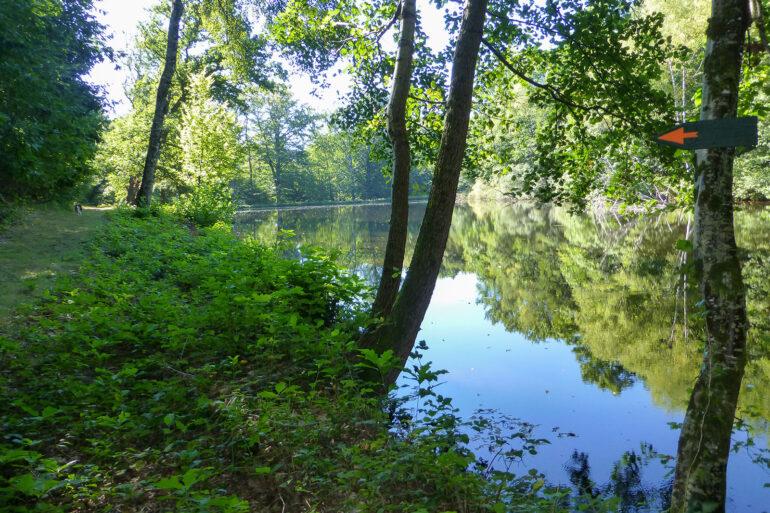 Wandelroute beekjes en bos wandelen in de Haute-Vienne regio Nouvelle-Aquitaine